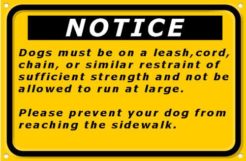 Dog Leash Requirement